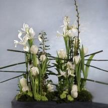 Centro de flores F 240